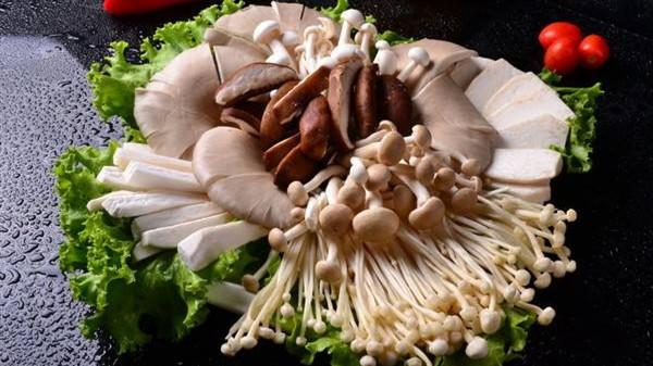 成都高端养老院经验分享骨质疏松老人吃什么-菌类