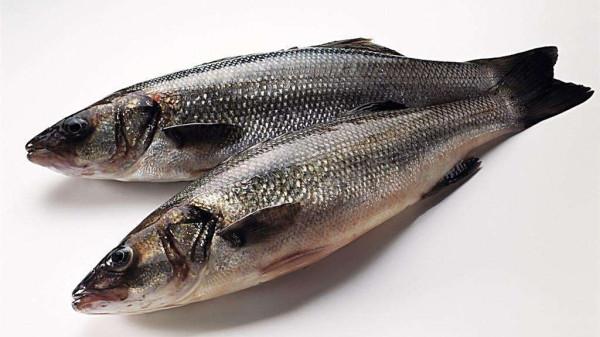成都高端养老院经验分享骨质疏松老人吃什么-鱼