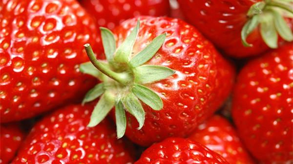 成都养老院经验分享:冬季吃对这8种水果,肌肤越变越水润(下)-草莓