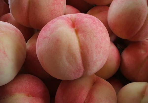 成都青羊区养老院-一暄康养推荐老年人糖尿病适合吃的水果(1)-桃2