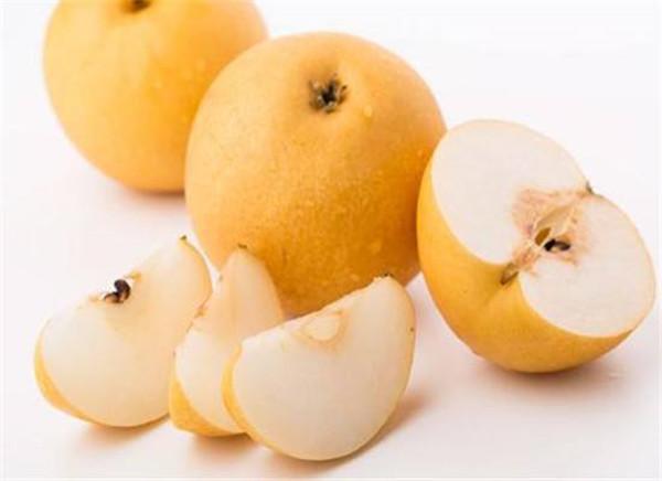 成都青羊区养老院-一暄康养推荐老年人糖尿病适合吃的水果(1)-梨4