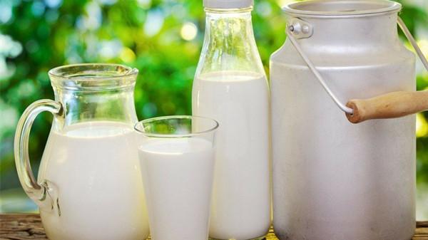 成都金牛区养老院一暄康养告诉您老年人适合喝什么牛奶3