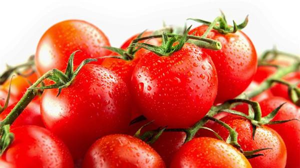 成都养老院经验分享:吃对这8种水果,肌肤越变越水润(上)-西红柿
