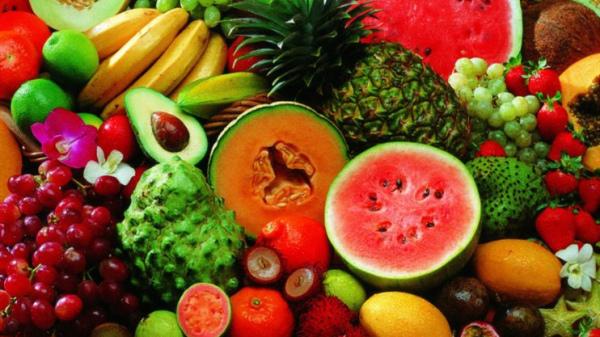 成都养老院-老年人在夏季应如何选择适合自己体质的水果2