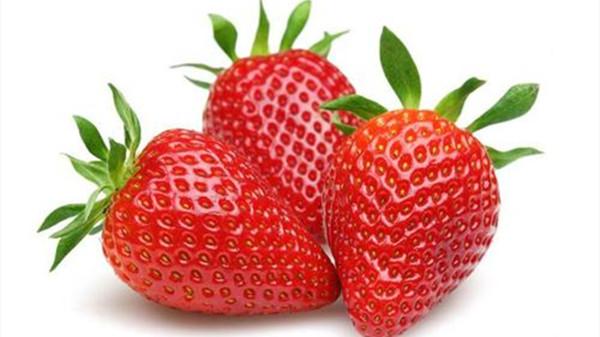 成都养老院一暄康养给大家介绍适合糖尿病患者吃的水果(1)-草莓1