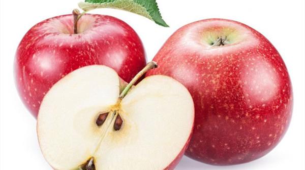 成都养老院一暄康养给大家介绍适合糖尿病患者吃的水果(4)