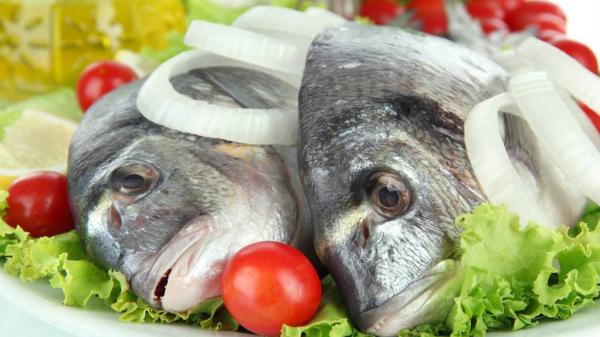 成都养老院一暄康养-健康食物-鱼类
