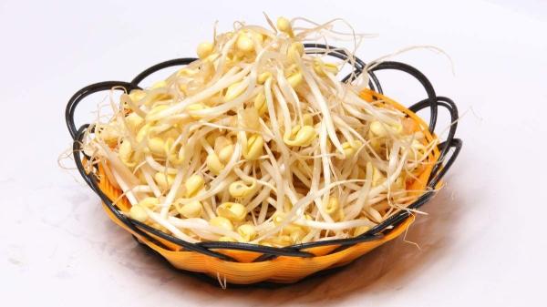 成都好的养老院、成都高档的养老院一暄康养为您介绍冬季必吃的食物(一)-黄豆芽