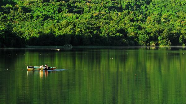 海南木棉湖森林覆盖率高-图2