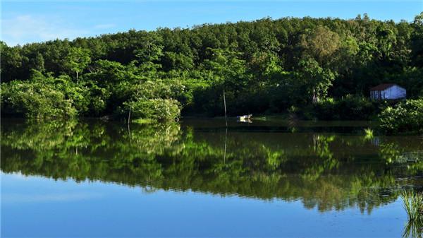 海南木棉湖景致