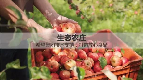 海南木棉湖-生态农庄