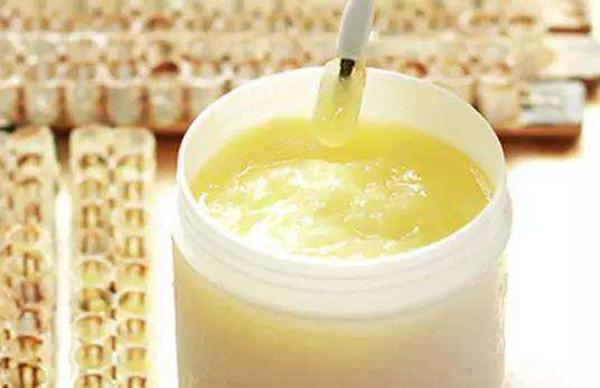 成都养老院-一暄康养推荐蜂王浆的功效与作用-蜂王浆