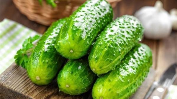 成都养老院经验分享:牢记!这6种食物千万别放在冰箱里(上)-黄瓜