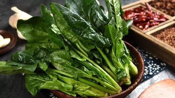 成都金牛区养老院一暄康养介绍老年人食补吃什么最好(二)-菠菜